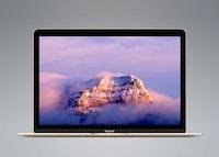 Vector MacBook Gold